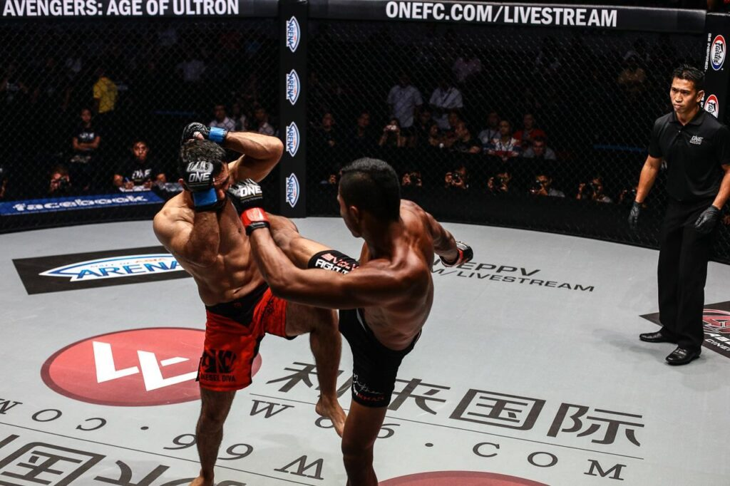 Watch: Top 7 Knockouts in ONE Championship (Videos)
