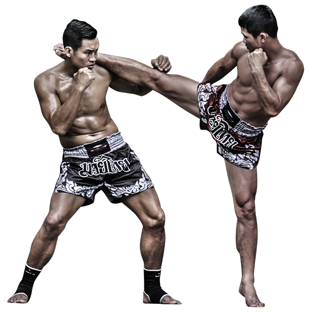 About Evolve MMA