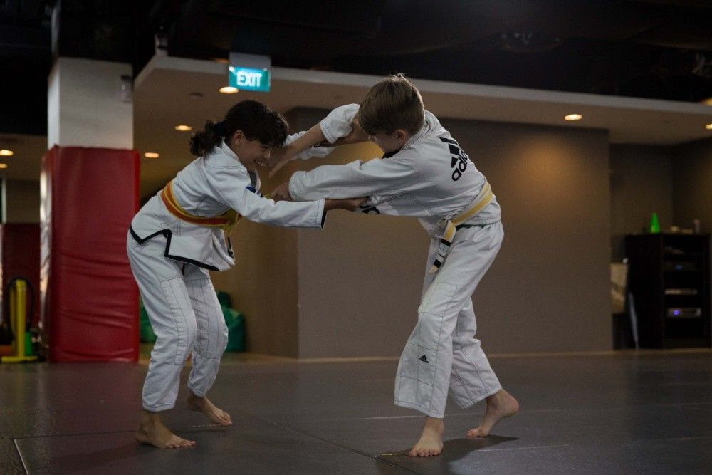 BJJ enables a smaller person to overcome a bigger and stronger opponent.