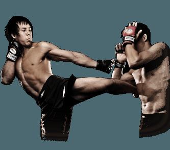 Fighters Program