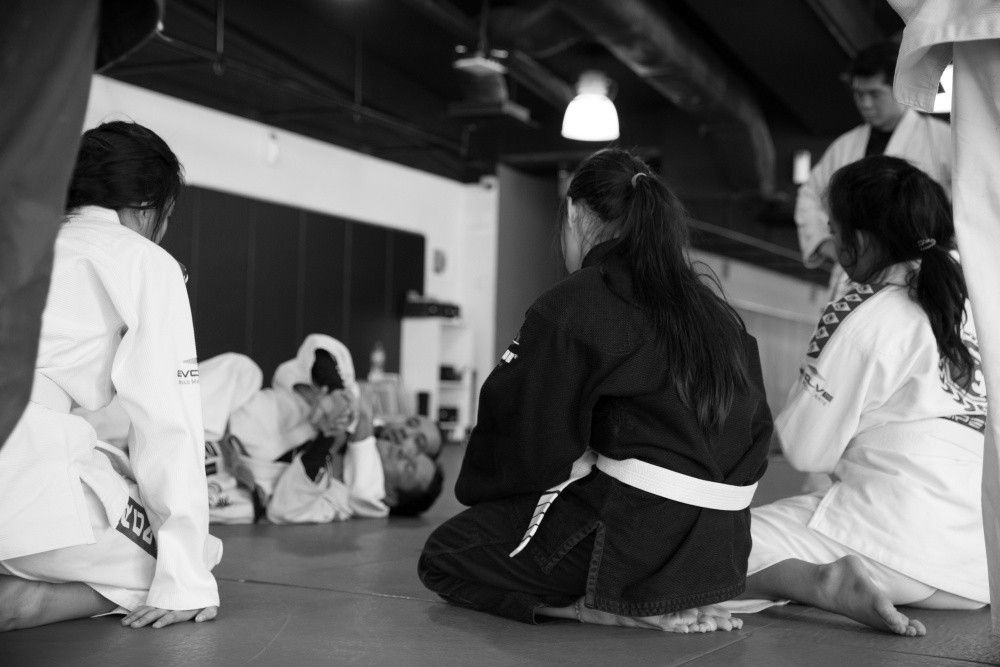 The concept of leverage is one of the key fundamentals of BJJ.
