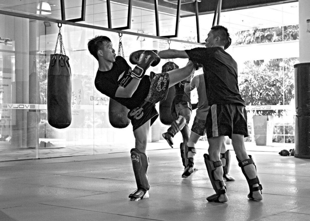 MT_sparring