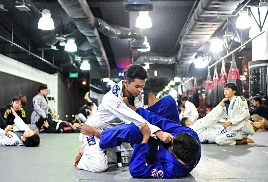 "Brazilian Jiu-Jitsu is also known as ""The Gentle Art""."