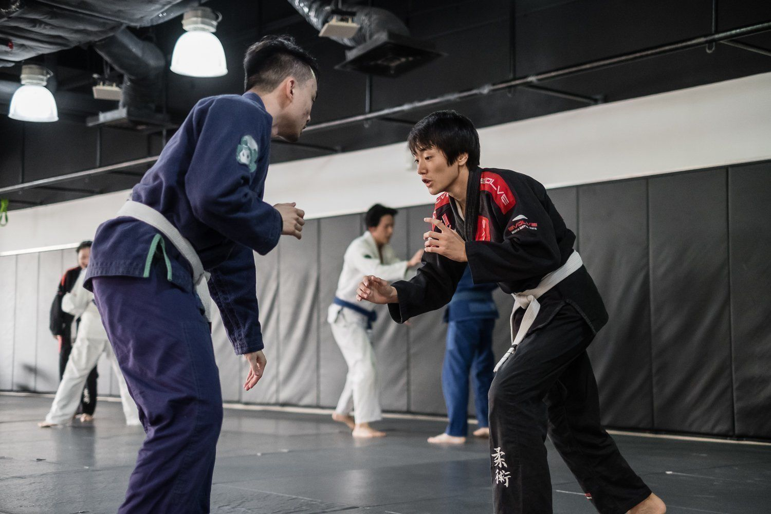 the 7 deadly sins of martial arts evolve daily
