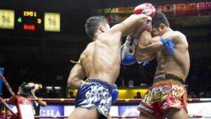 Muay Thai Shell Defense 2