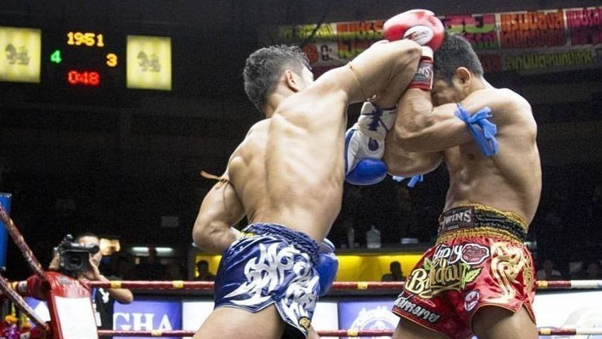 Muay Thai Shell Defense 2