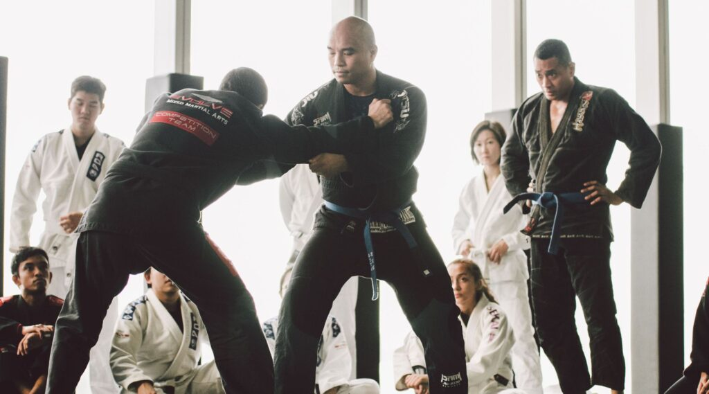 Everything You Wanted To Know About Martial Arts But Were Too Afraid To Ask