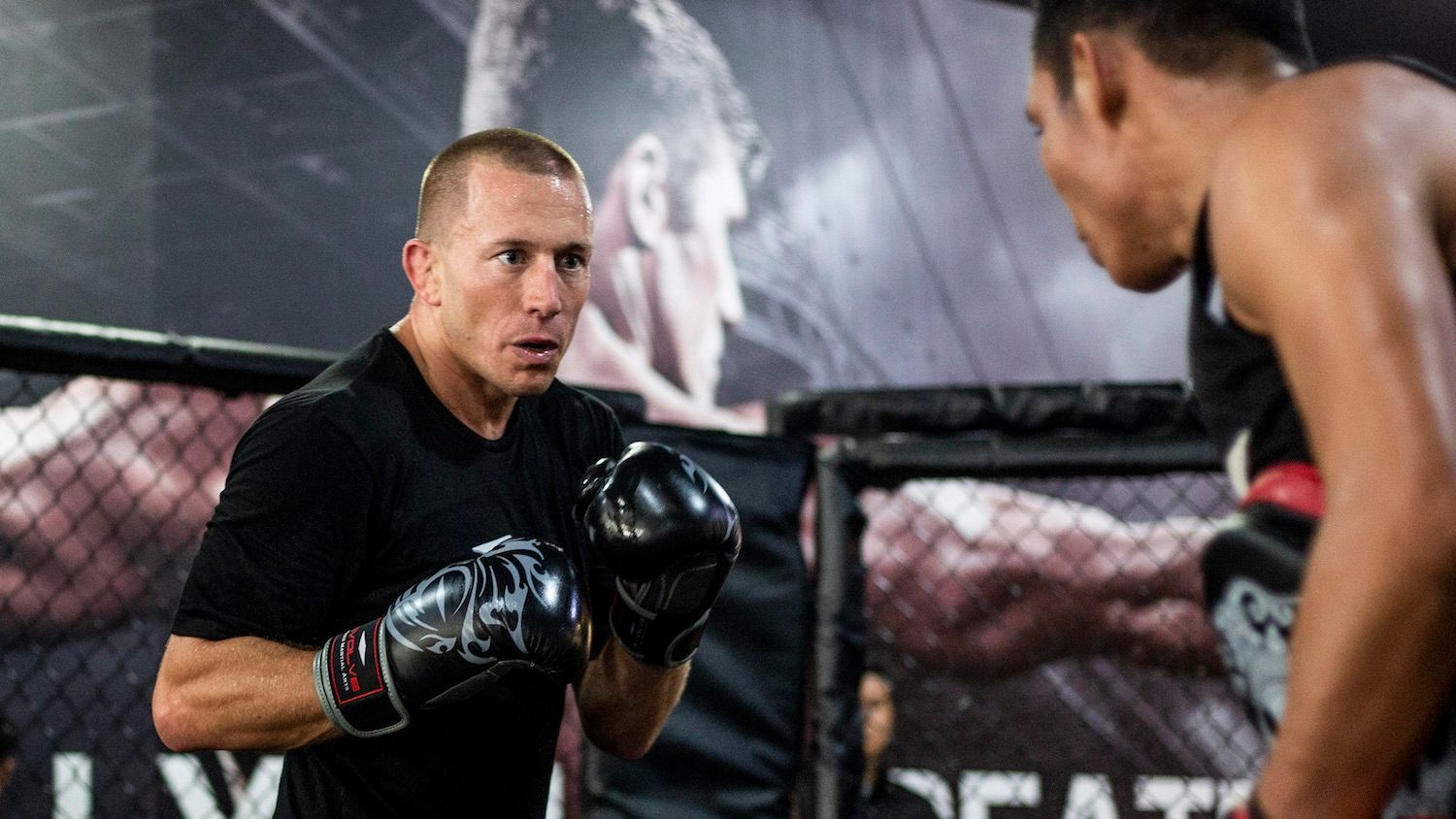 Georges St. Pierre training boxing
