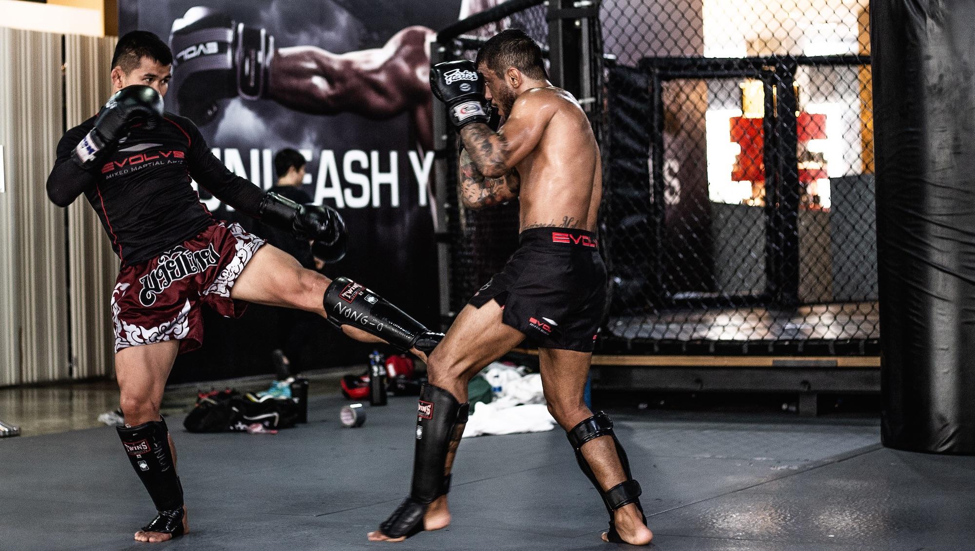 muay thai inside leg kick