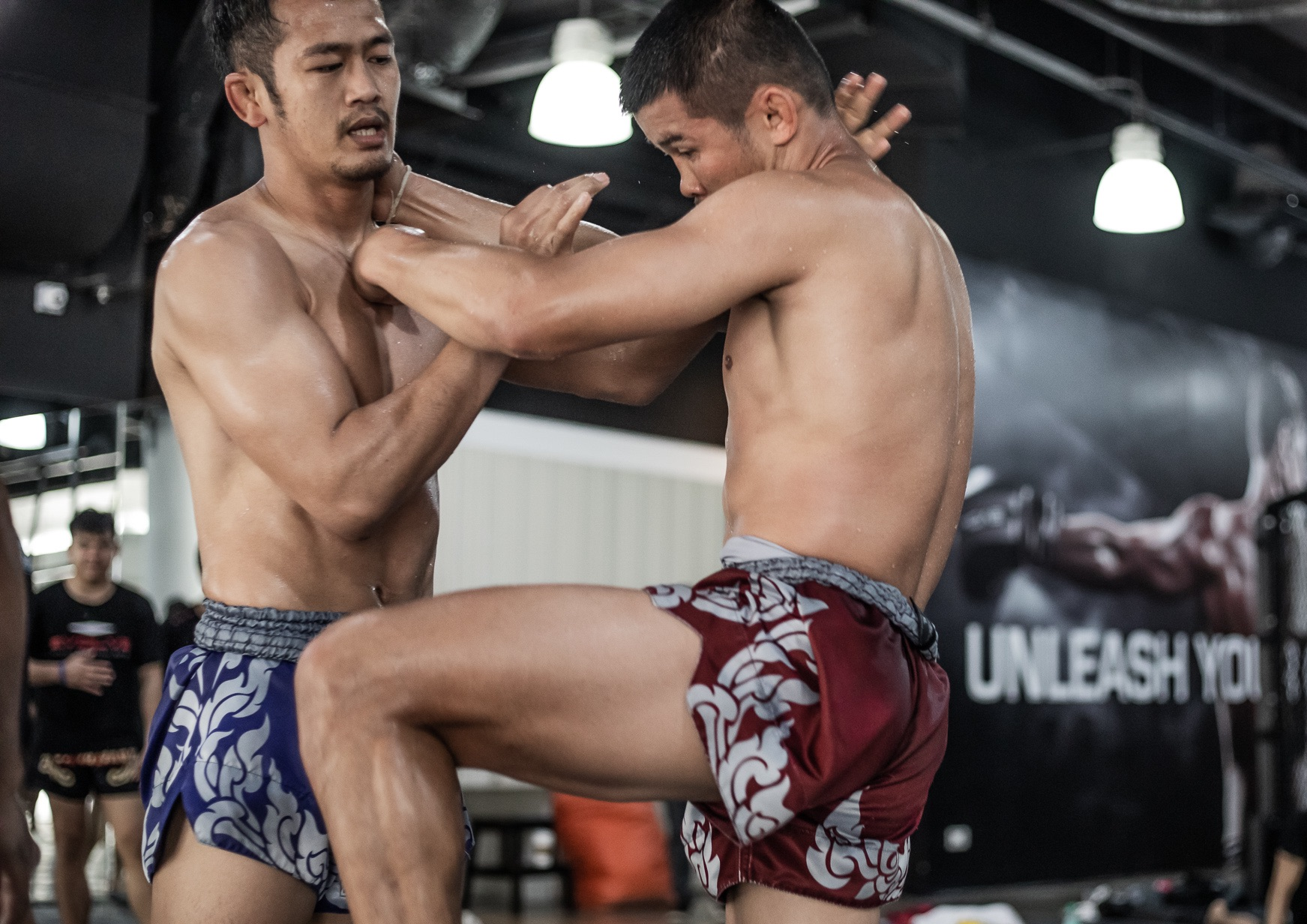 knee liver muay thai