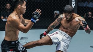 5 Basic Kicks For MMA