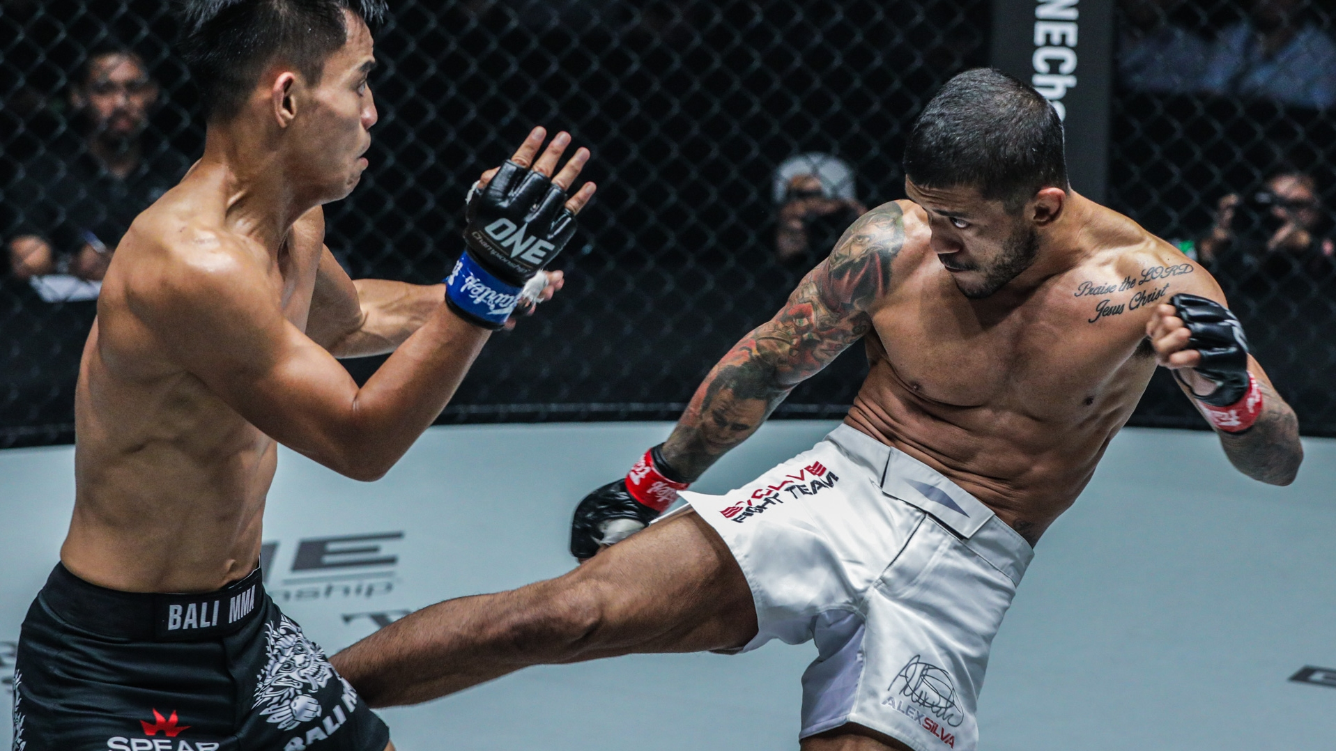 alex leg kick one championship