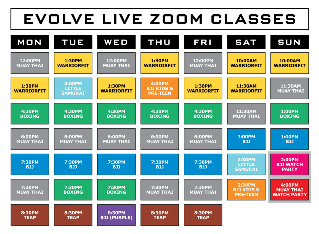Book Your Live Zoom Trial Class