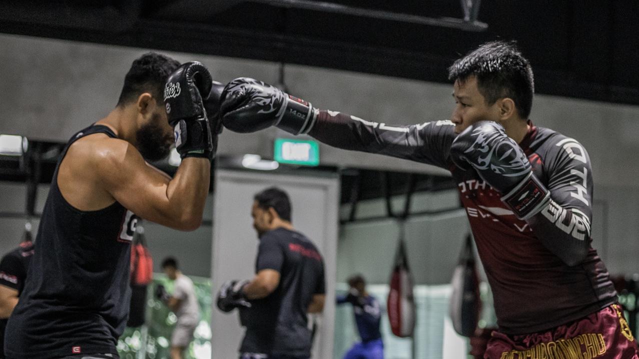 boxing spar