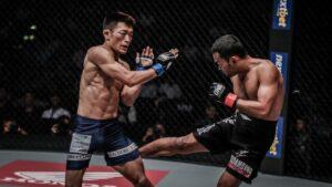 The Beginner's Guide To Leg Kicks In MMA