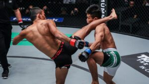 Muay Thai And Boxing Adjustments For MMA Striking