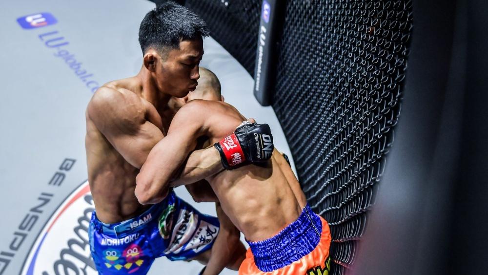 Understanding Underhooks And Overhooks In MMA