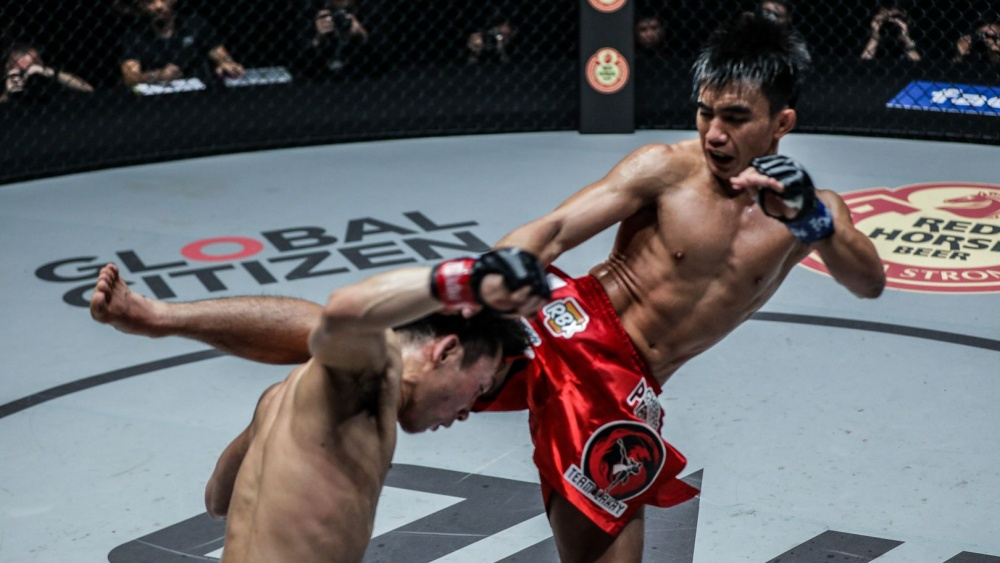 Top 10 Head Kick Knockouts In MMA History