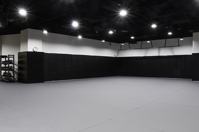 EVOLVE KINEX BJJ Training Room
