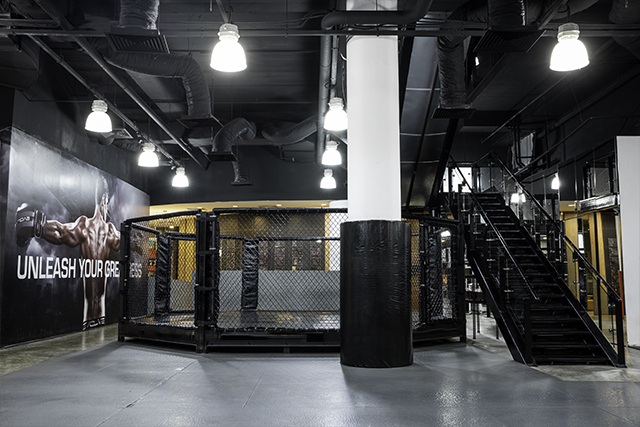 Evolve FES Cage And MT Room