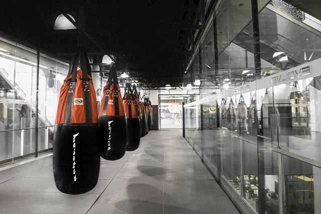 Evolve Orchard Central Heavy Bag Station