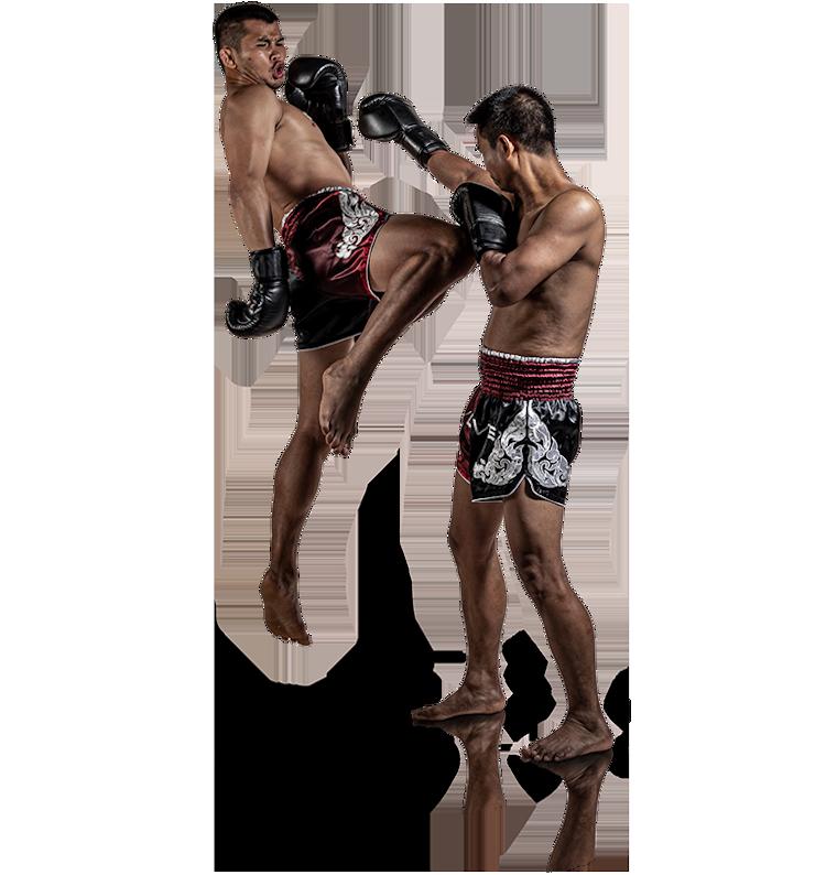 Evolve MMA (KINEX)